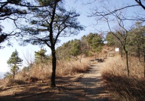 Gunung Waryoung